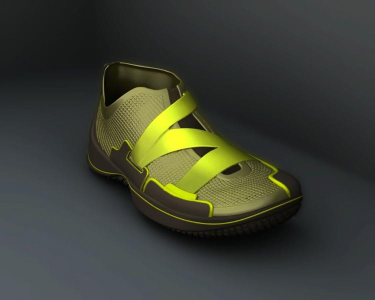 ZShoe Freeform