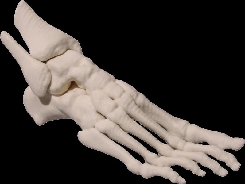 Foot 1 Medical